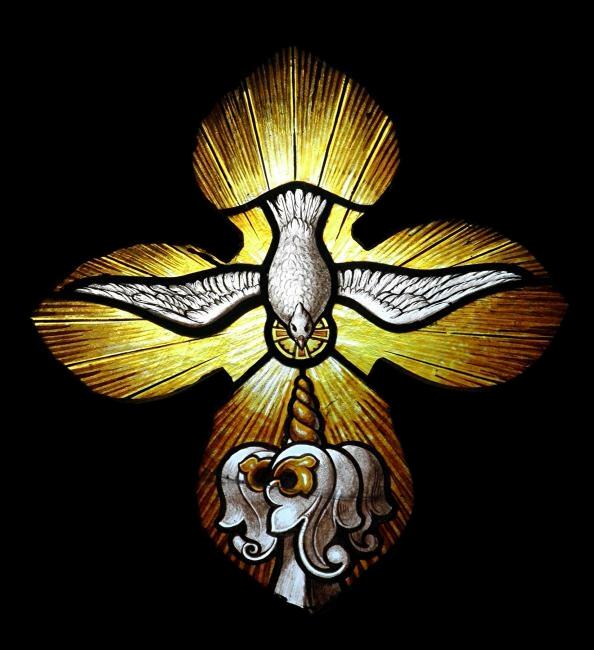 Heiliger Geist Taube Flügel trans